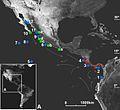 The-land-crab-Johngarthiaplanata-(Stimpson-1860)-(Crustacea-Brachyura-Gecarcinidae)-colonizes-human-biodiversity data journal-2-e1161-g002.jpg