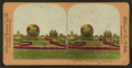 "The ""World,"" Washington Park, Chicago, by Rau, William Herman, 1855-1920 2.png"