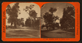 The Alameda Road to Santa Clara, from Robert N. Dennis collection of stereoscopic views.png