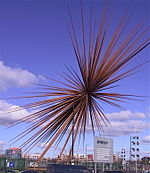 A three-dimensional series of rust-coloured metal spikes with a common origin in the centre, symbolising a explosion