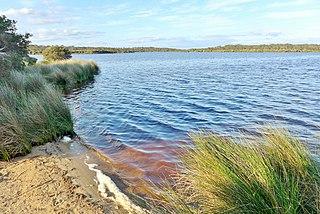 Scott River (Western Australia) river in Australia