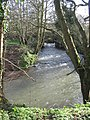 The Cam Brook - geograph.org.uk - 359496.jpg
