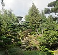 The Japanese Garden, Jarkow (31296957374).jpg