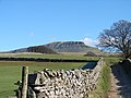 The Pennine Way path to Pen-y-ghent - geograph.org.uk - 477535.jpg