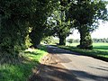 The Road From Scoulton Mere - geograph.org.uk - 278013.jpg