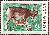 The Soviet Union 1969 CPA 3795 stamp (Red Deer).jpg