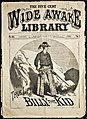 The True Life of Billy the Kid (1881) cover.jpg