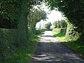 The lane between Stapleton and Lower Kinsham - geograph.org.uk - 44201.jpg