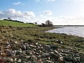 The sea-shore south of the end of the Carrickinab Road - geograph.org.uk - 2165007.jpg
