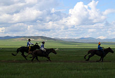 Three Naadam riders.jpg