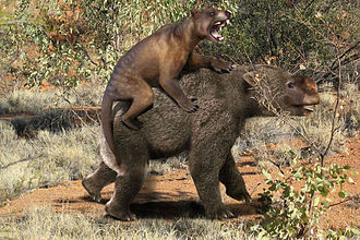 Thylacoleo - Restoration of Thylacoleo attacking Diprotodon.
