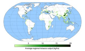 Tobacco industry - Map of tobacco production across the world