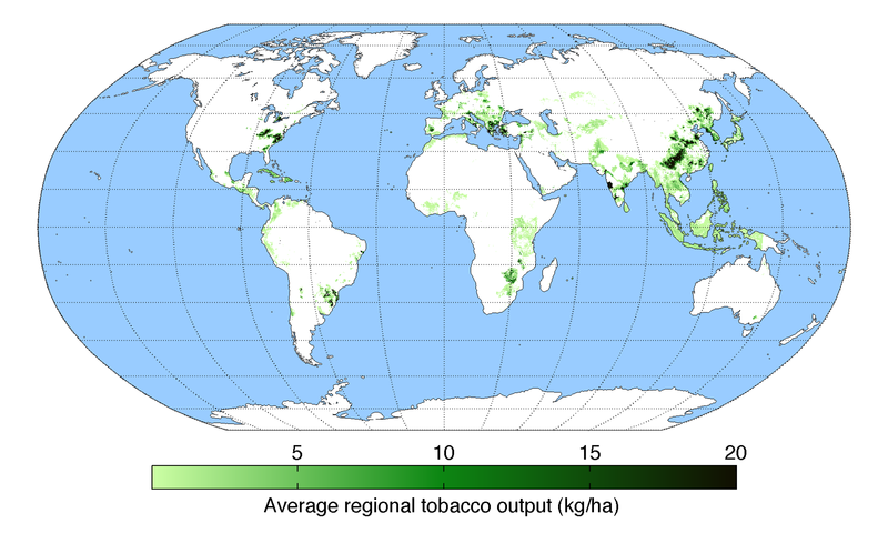 Map of tobacco production across the world TobaccoYield.png