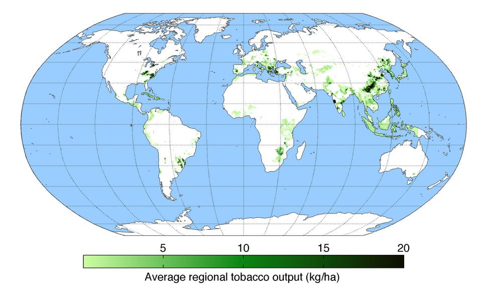 TobaccoYield