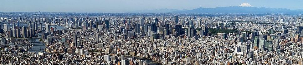 צילום פנורמי של טוקיו כפי שהיא משתקפת מעץ השמיים
