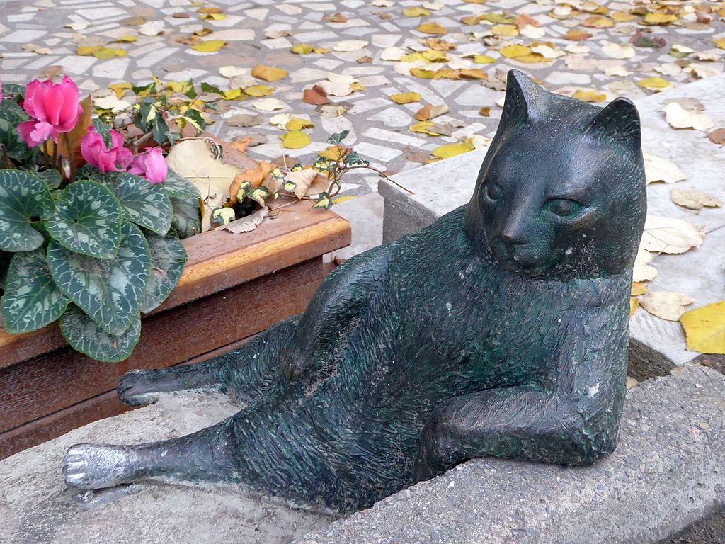 Tombili statue Istanbul
