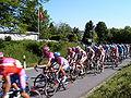 Tour de Suisse.jpg