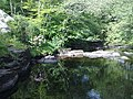 Tranquility at the Falls of Dochart - geograph.org.uk - 1364695.jpg