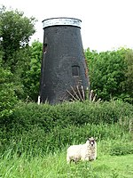 Tunstall Dyke Tower Mill.jpg