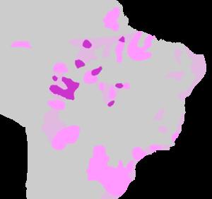 Tupi people - Lenguas tupí (violeta) y lenguas tupí-guaraníes (rosa) en la actualidad y áreas de extensión probables en el pasado.