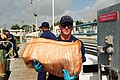 U.S. Coast Guard Petty Officer 3rd Class Matthew Morin unloads contraband transferred from the high-endurance cutter USCGC Gallatin (WHEC 721) during Operation Martillo in Miami June 7, 2013 130607-G-KU792-145.jpg