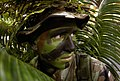 US Air Force 050129-F-5040D-009 Airman 1st Class Nathan Fitzwater conceals himself in palm leaves using camouflaging and face paint at Andersen Air Force Base.jpg