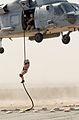 US Navy 030317-N-5362A-007 A member of a Naval Special Warfare team conducts a fast rope insertion training operation from an SH-60 Seahawk helicopter at a forward operating location.jpg