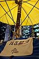 Umbrella Revolution (16026730191).jpg