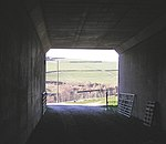 Under the M62 Looking back from one of the access tunnels to Stott Hall Farm.