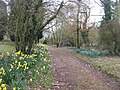 Up the garden path - geograph.org.uk - 406155.jpg