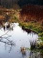 Upstream Aarestrupvad Å - panoramio.jpg