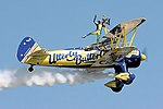 Utterly Butterly - RIAT 2006 (2391886095).jpg