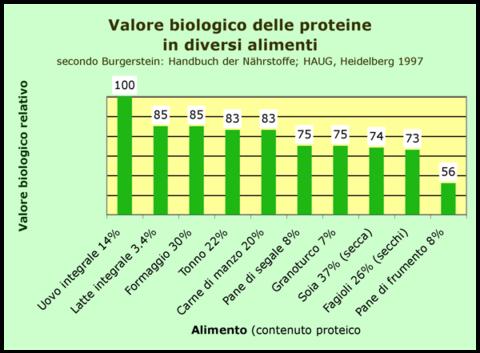 valore biologico - wikipedia