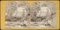 Veiled Fall on Lick Brook, Ithaca, from Robert N. Dennis collection of stereoscopic views.png