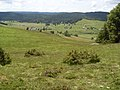 Verstreute Schwarzwaldhöfe (7424962824).jpg