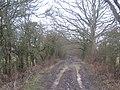 Very muddy bridleway to Bethersden - geograph.org.uk - 1720562.jpg