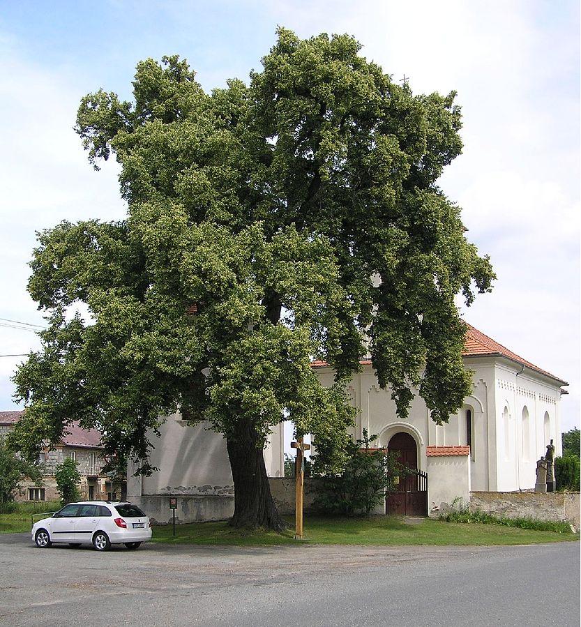 Vidice (Kutná Hora District)