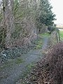 View along the footpath through Sangrado's Wood - geograph.org.uk - 678037.jpg