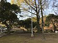 View in Miyazaki Central Park 3.jpg