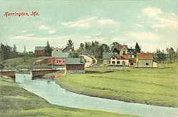 View of Harrington, ME.jpg