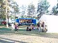 Viksholmsfestivalen 2007 (02).JPG