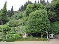 Villa san michele, giardino ovest 06.JPG