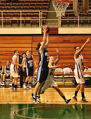 Wheaton College (Massachusetts) - Wheaton in blue away-game jerseys against WPI
