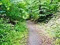 Wanderweg - panoramio (6).jpg