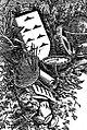Wappen Kanaren 1882-1884.jpg