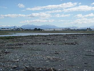 Washdyke Lagoon - Figure 2:Photograph of the mixed sand and gravel (MSG) barrier of Washdyke Lagoon