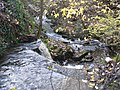 Waterfall in spate at Baxton Gill - geograph.org.uk - 1592676.jpg