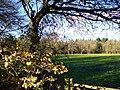 Wealden Landscape, Prestwick - geograph.org.uk - 291794.jpg