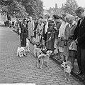 Wereld Dierendag 1964 , het voeren der dieren (buitenland), Bestanddeelnr 916-9722.jpg