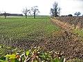 West of Bainton - geograph.org.uk - 110576.jpg